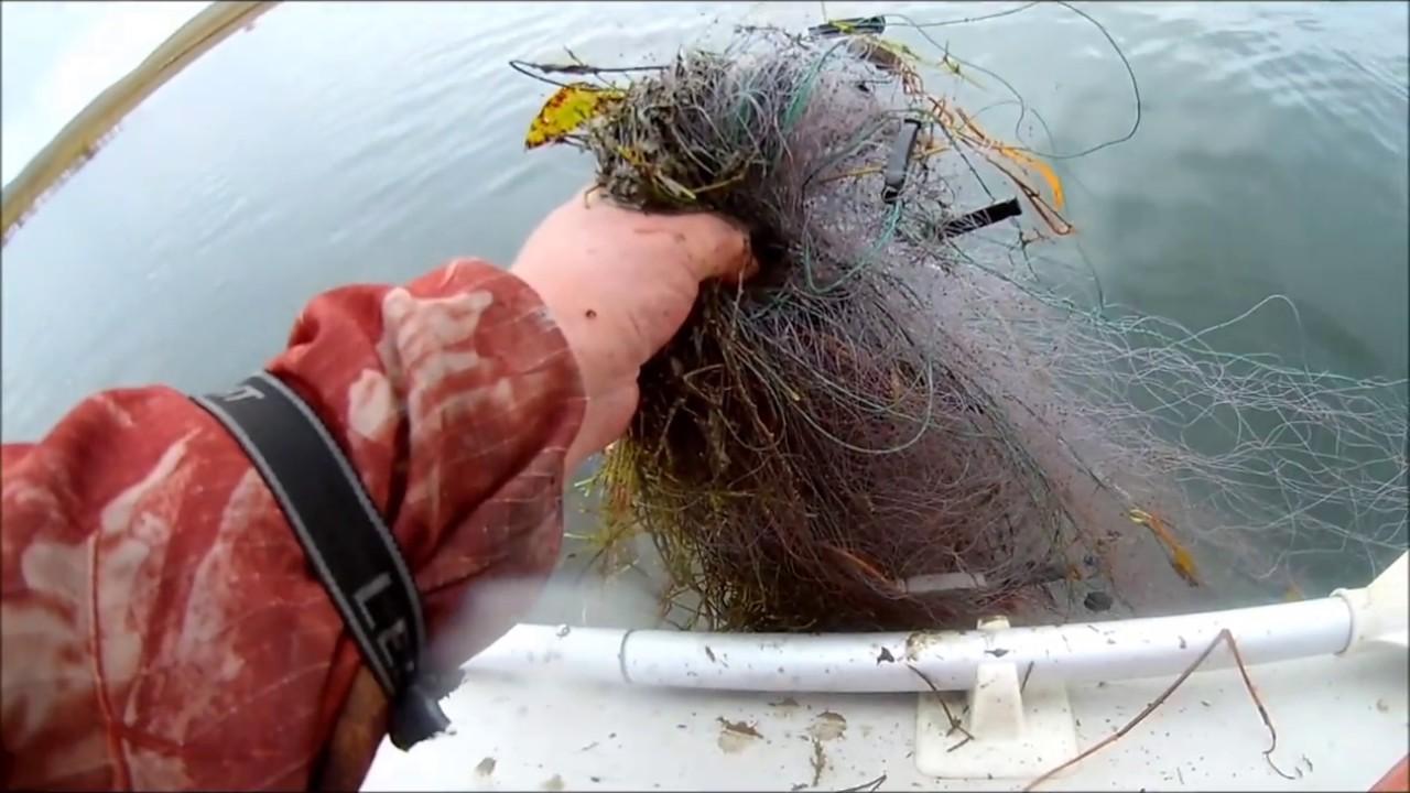 Дубровскому браконьеру грозит срок за незаконный лов рыбы