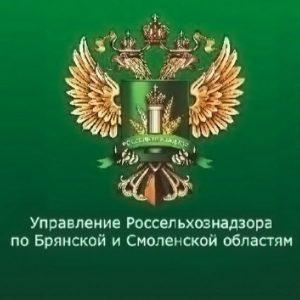 В Брянске запретили к продаже распространенный ветеринарный препарат