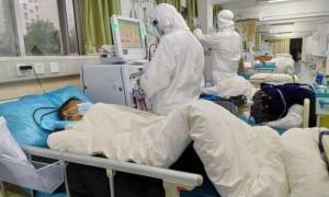 В Брянской области число заболевших коронавирусом достигло 19-ти